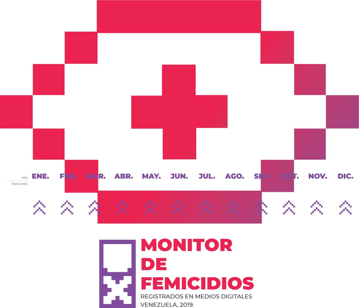 Monitor de Femicidios 2019