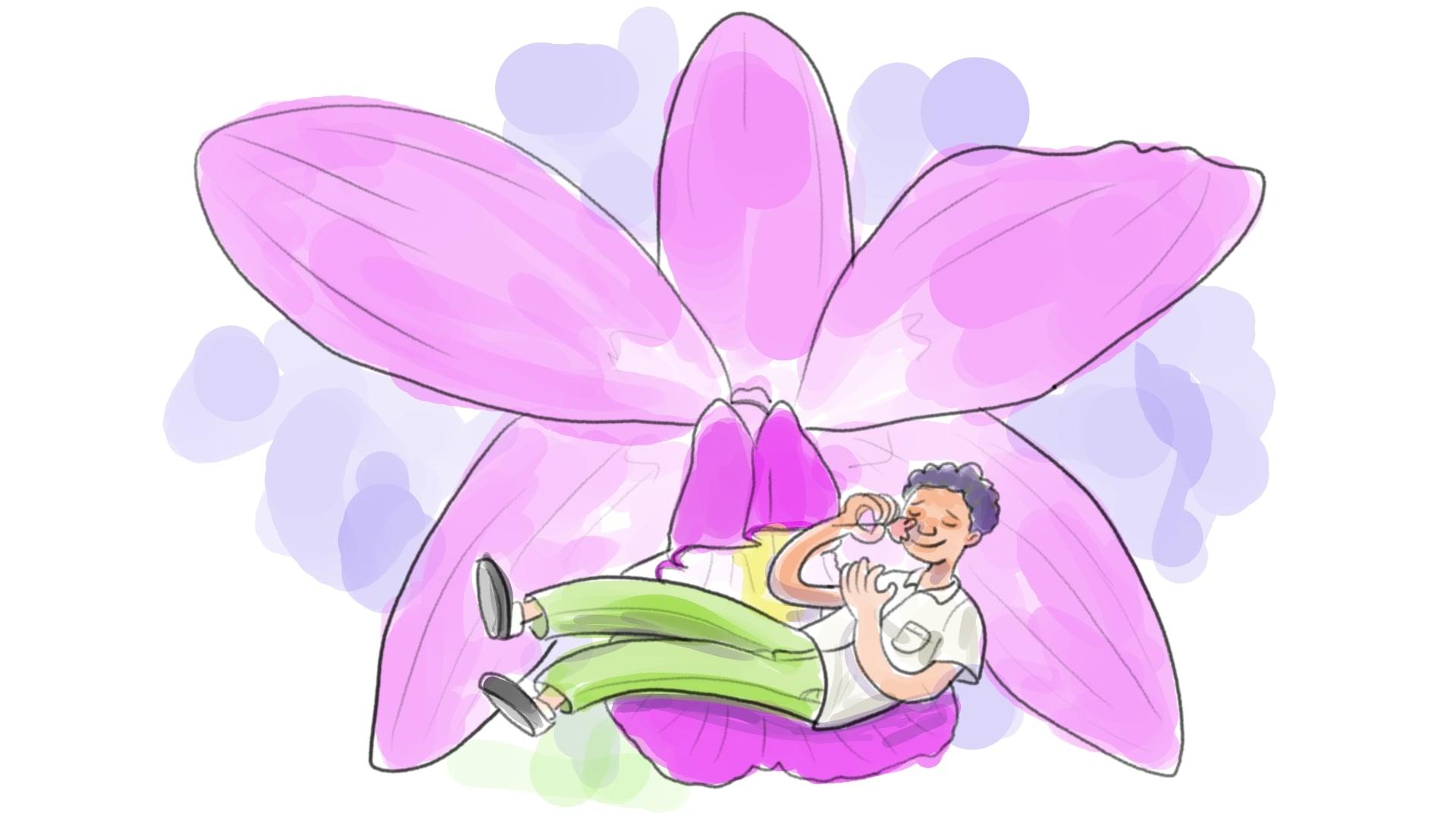 El muchacho sin sonmbre esta sobre una orquídea gigante, y huele una flor que tiene en sus manos.